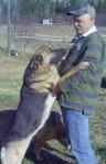 Dog training 150